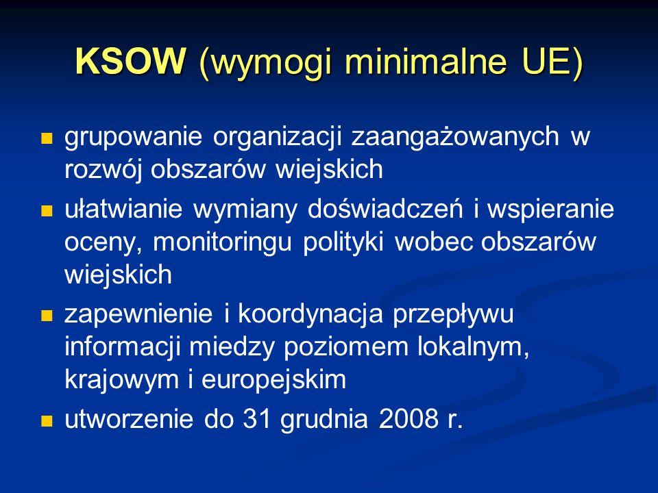 KSOW (wymogi minimalne UE) grupowanie organizacji zaangażowanych w rozwój obszarów wiejskich ułatwianie wymiany doświadczeń i wspieranie oceny, monitoringu polityki wobec obszarów wiejskich zapewnienie i koordynacja przepływu informacji miedzy poziomem lokalnym, krajowym i europejskim utworzenie do 31 grudnia 2008 r.