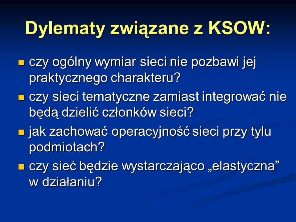 Dylematy związane z KSOW: czy ogólny wymiar sieci nie pozbawi jej praktycznego charakteru.