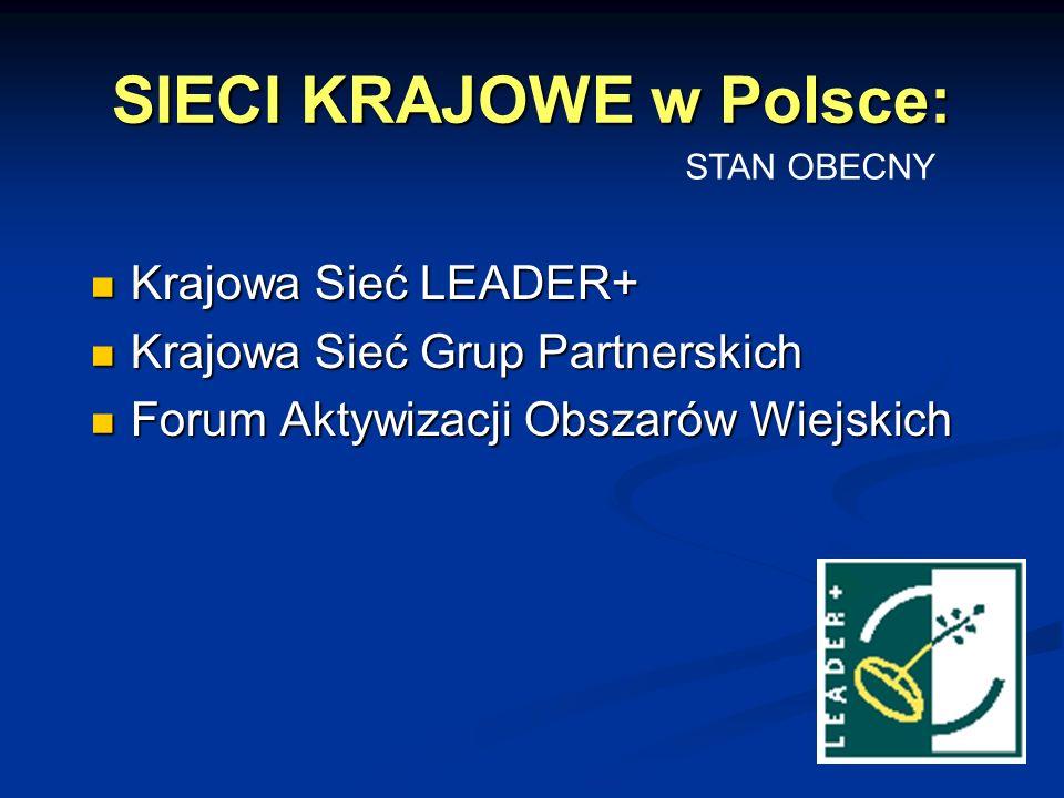 SIECI KRAJOWE w Polsce: Krajowa Sieć LEADER+ Krajowa Sieć LEADER+ Krajowa Sieć Grup Partnerskich Krajowa Sieć Grup Partnerskich Forum Aktywizacji Obszarów Wiejskich Forum Aktywizacji Obszarów Wiejskich STAN OBECNY