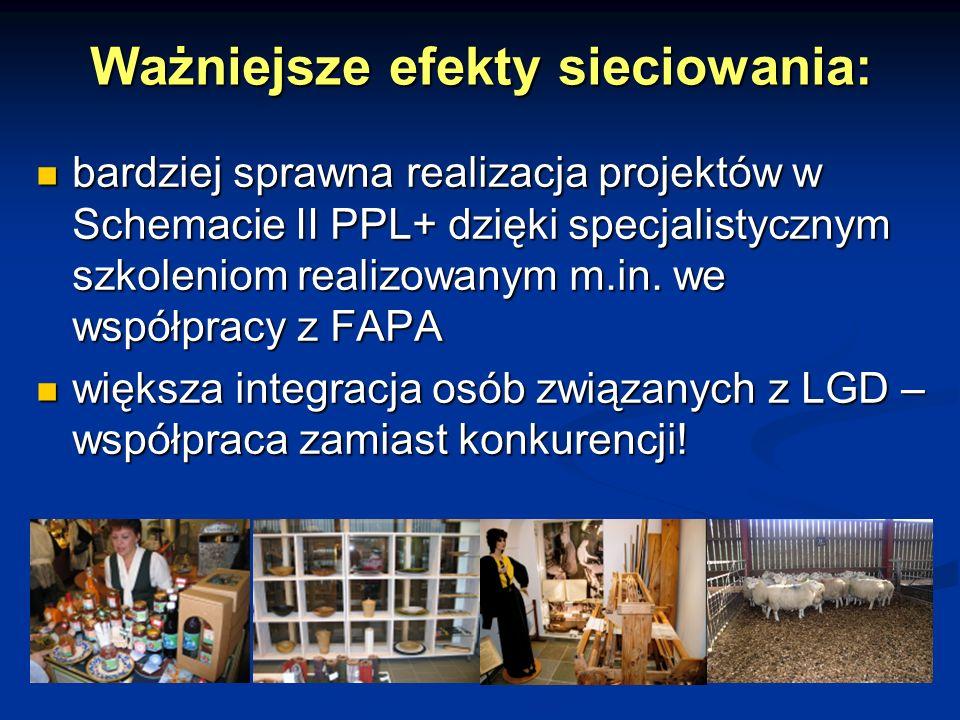 Ważniejsze efekty sieciowania: bardziej sprawna realizacja projektów w Schemacie II PPL+ dzięki specjalistycznym szkoleniom realizowanym m.in. we wspó