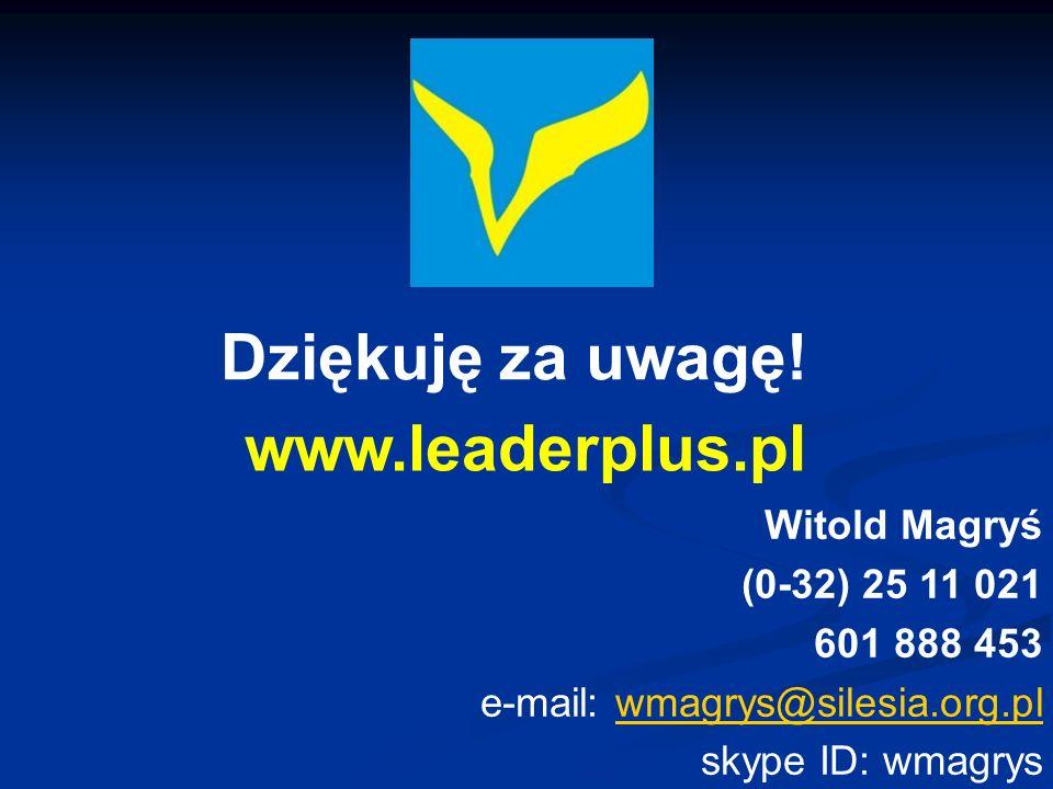 Dziękuję za uwagę! Witold Magryś (0-32) 25 11 021 601 888 453 e-mail: wmagrys@silesia.org.plwmagrys@silesia.org.pl skype ID: wmagrys www.leaderplus.pl