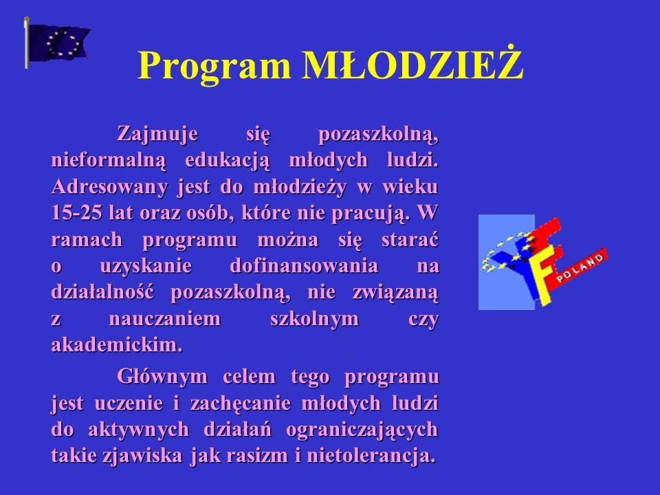 Formy realizacji programu: Wyjazdy na studia Rozwój nowych technologii w dziedzinie informacji i komunikacji Nauka języków obcych Projekty pilotażowe
