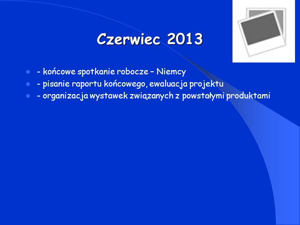 WIZYTY ROBOCZE LISTOPAD 2011 HOLANDIA MARZEC 2013 W.BRYT.