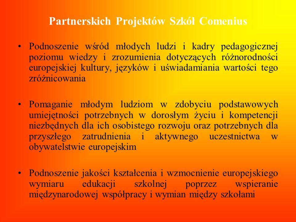 Partnerskich Projektów Szkół Comenius Podnoszenie wśród młodych ludzi i kadry pedagogicznej poziomu wiedzy i zrozumienia dotyczących różnorodności eur