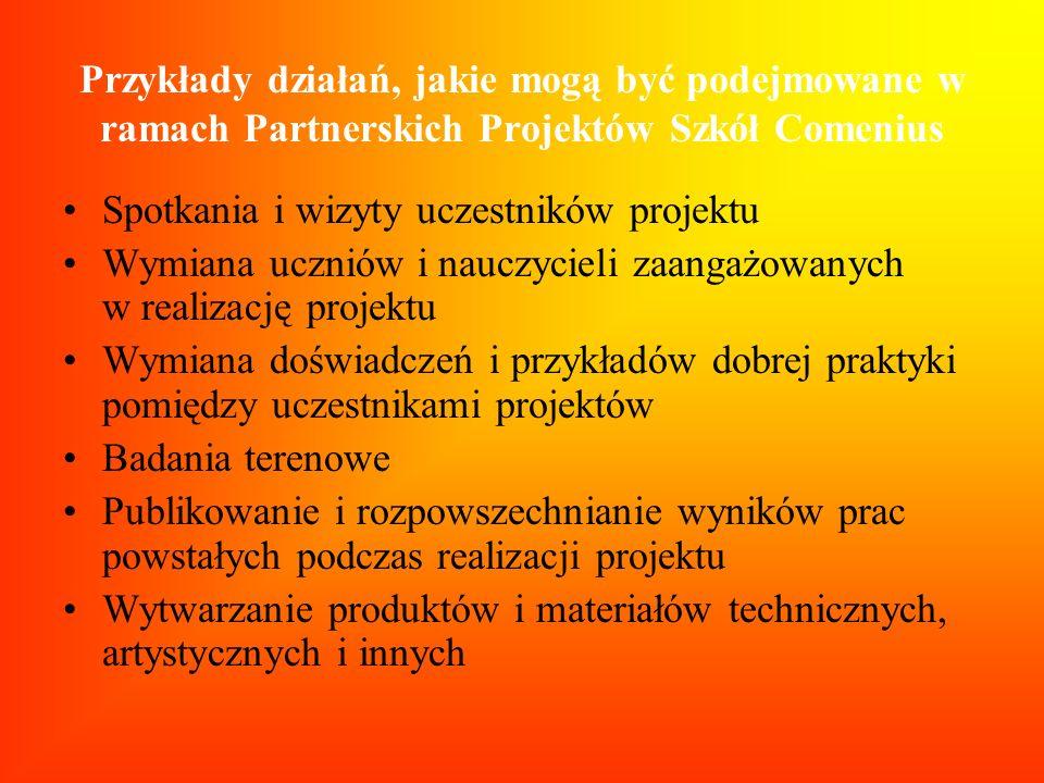 Przykłady działań, jakie mogą być podejmowane w ramach Partnerskich Projektów Szkół Comenius Spotkania i wizyty uczestników projektu Wymiana uczniów i