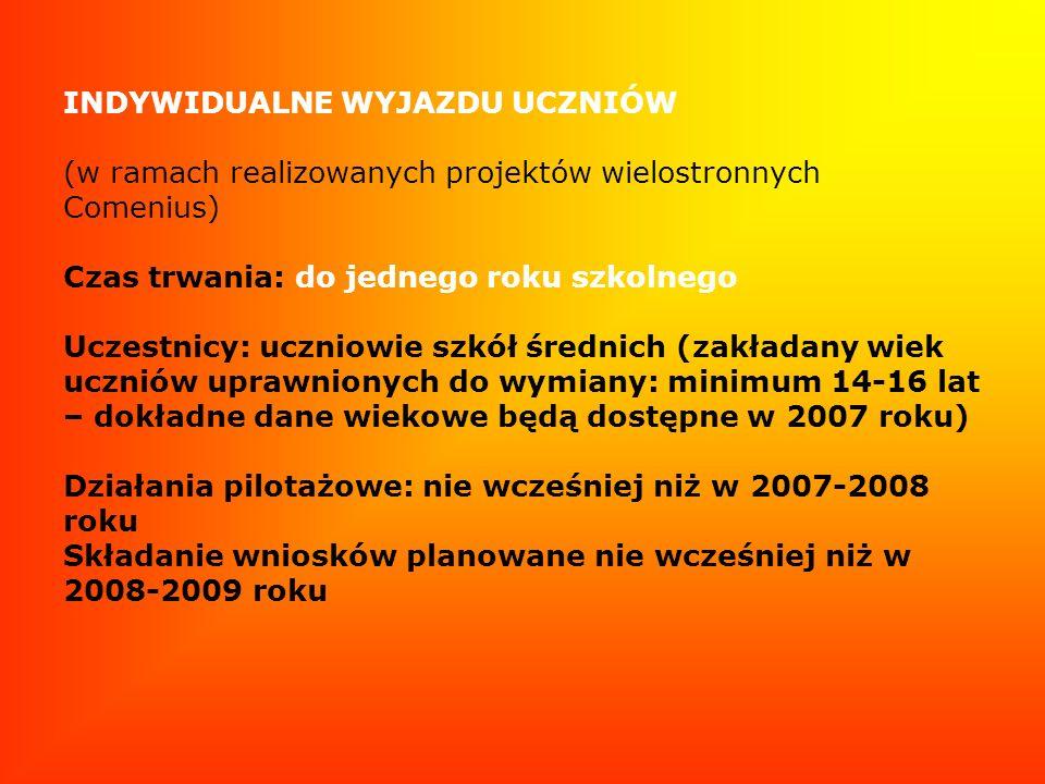 INDYWIDUALNE WYJAZDU UCZNIÓW (w ramach realizowanych projektów wielostronnych Comenius) Czas trwania: do jednego roku szkolnego Uczestnicy: uczniowie