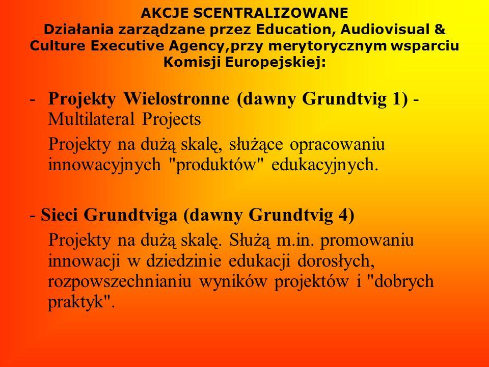 AKCJE SCENTRALIZOWANE Działania zarządzane przez Education, Audiovisual & Culture Executive Agency,przy merytorycznym wsparciu Komisji Europejskiej: -