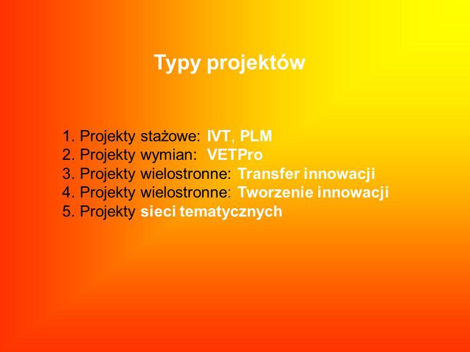 Typy projektów 1.Projekty stażowe: IVT, PLM 2.Projekty wymian: VETPro 3.Projekty wielostronne: Transfer innowacji 4.Projekty wielostronne: Tworzenie i