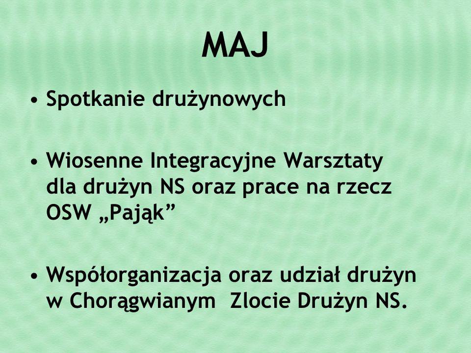 MAJ Spotkanie drużynowych Wiosenne Integracyjne Warsztaty dla drużyn NS oraz prace na rzecz OSW Pająk Współorganizacja oraz udział drużyn w Chorągwianym Zlocie Drużyn NS.