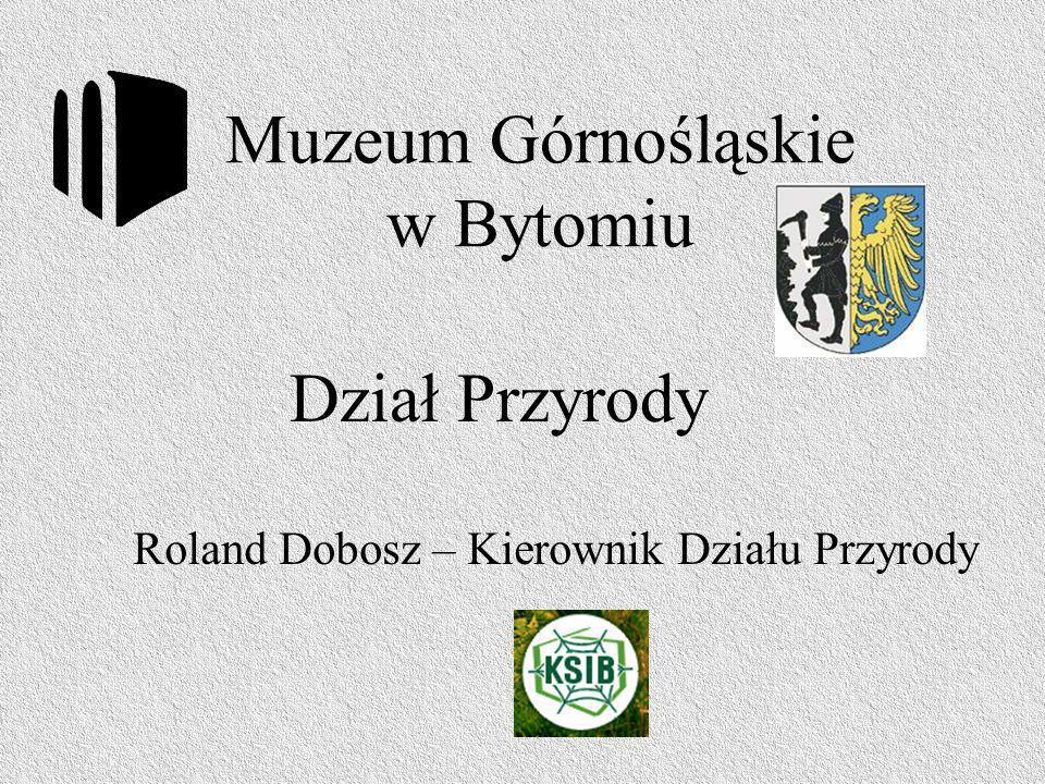 Zapraszam do Muzeum Górnośląskiego w Bytomiu