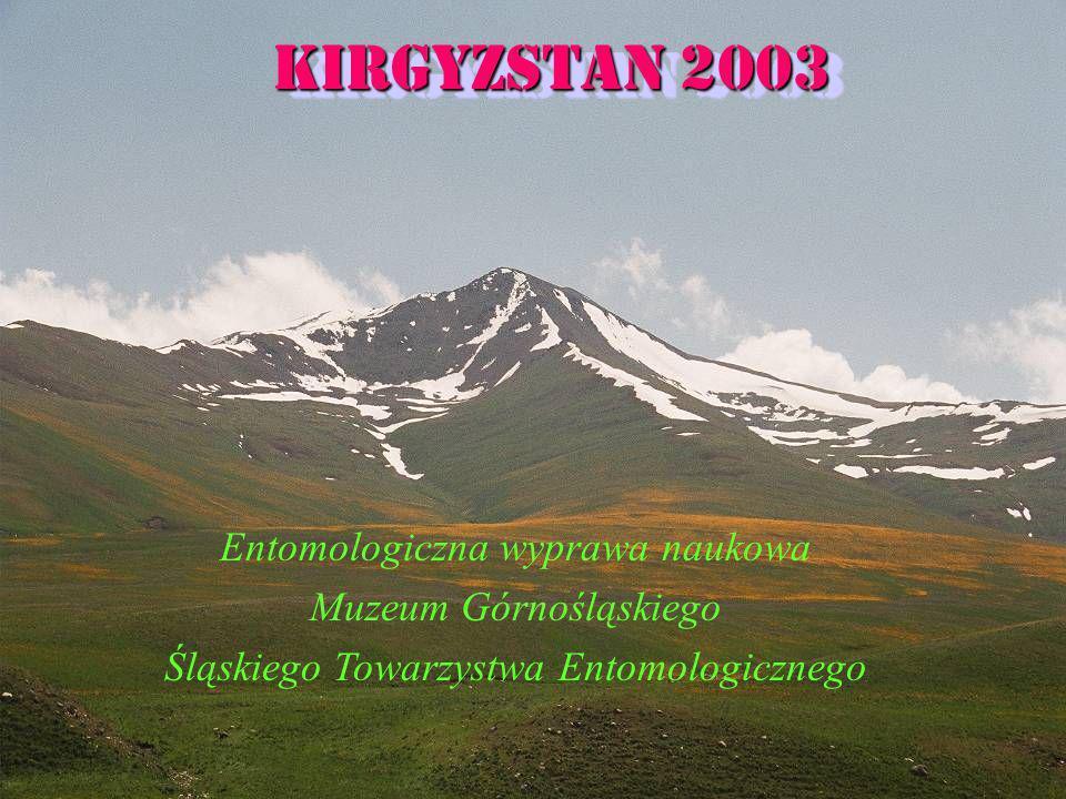 Kirgyzstan 2003 Entomologiczna wyprawa naukowa Muzeum Górnośląskiego Śląskiego Towarzystwa Entomologicznego