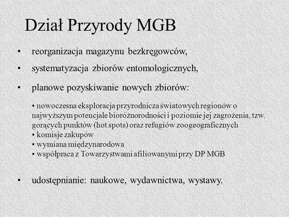 Dział Przyrody MGB reorganizacja magazynu bezkręgowców, systematyzacja zbiorów entomologicznych, planowe pozyskiwanie nowych zbiorów: nowoczesna ekspl
