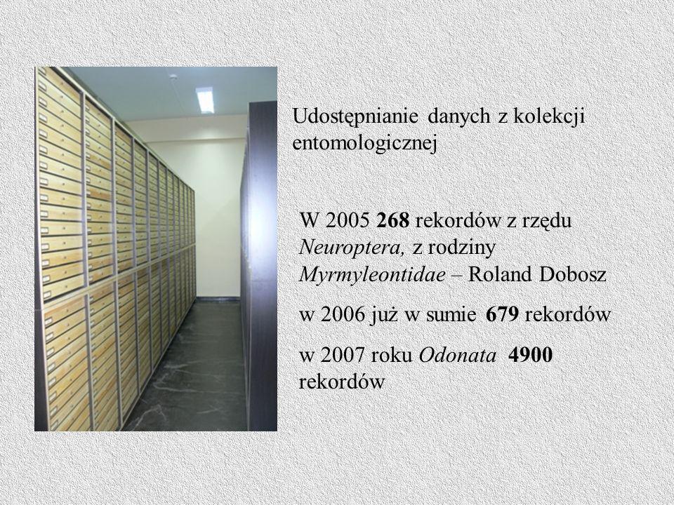 Udostępnianie danych z kolekcji entomologicznej W 2005 268 rekordów z rzędu Neuroptera, z rodziny Myrmyleontidae – Roland Dobosz w 2006 już w sumie 67