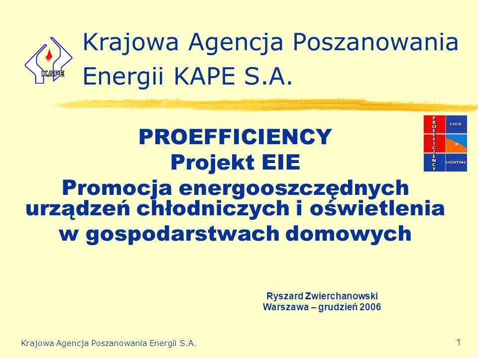 Krajowa Agencja Poszanowania Energii S.A. 1 Krajowa Agencja Poszanowania Energii KAPE S.A. PROEFFICIENCY Projekt EIE Promocja energooszczędnych urządz
