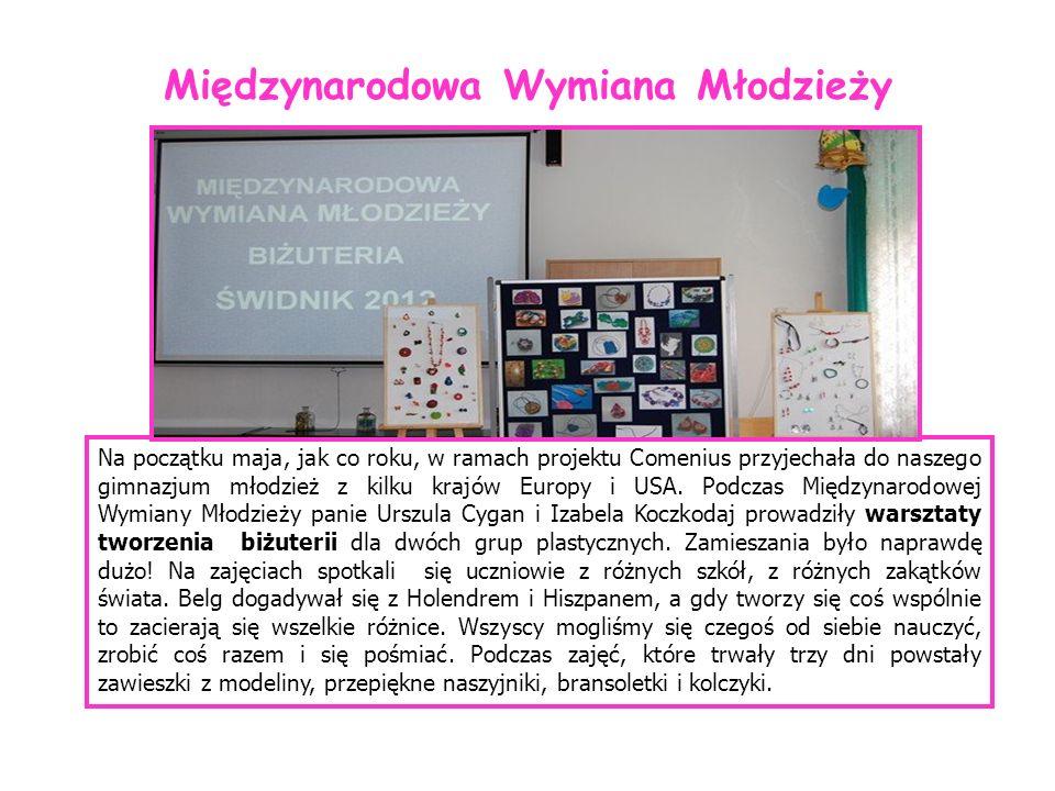 Na początku maja, jak co roku, w ramach projektu Comenius przyjechała do naszego gimnazjum młodzież z kilku krajów Europy i USA. Podczas Międzynarodow
