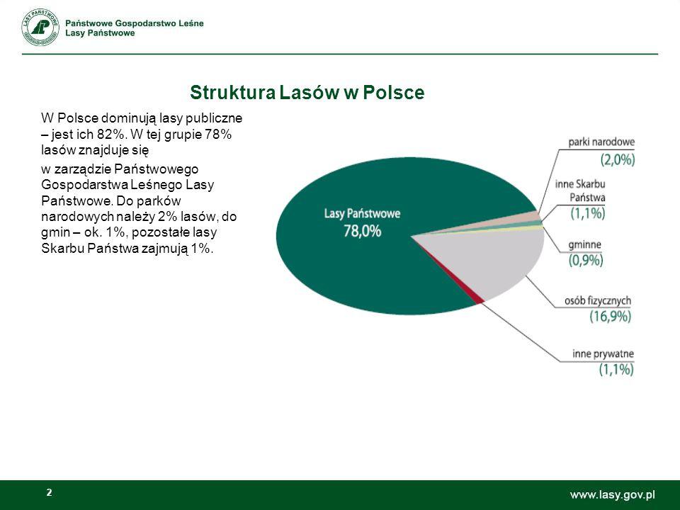 2 Struktura Lasów w Polsce W Polsce dominują lasy publiczne – jest ich 82%. W tej grupie 78% lasów znajduje się w zarządzie Państwowego Gospodarstwa L