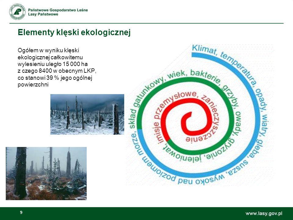 9 Elementy klęski ekologicznej Ogółem w wyniku klęski ekologicznej całkowitemu wylesieniu uległo 15 000 ha z czego 8400 w obecnym LKP, co stanowi 39 %