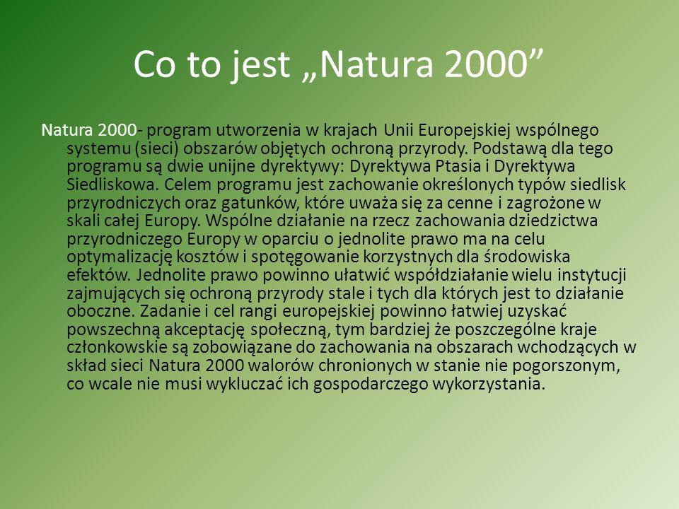 Co to jest Natura 2000 Natura 2000- program utworzenia w krajach Unii Europejskiej wspólnego systemu (sieci) obszarów objętych ochroną przyrody.