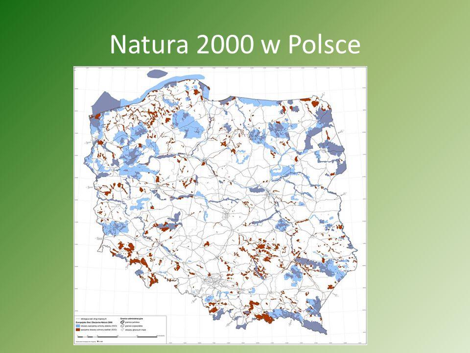 Co to jest Natura 2000 Natura 2000- program utworzenia w krajach Unii Europejskiej wspólnego systemu (sieci) obszarów objętych ochroną przyrody. Podst