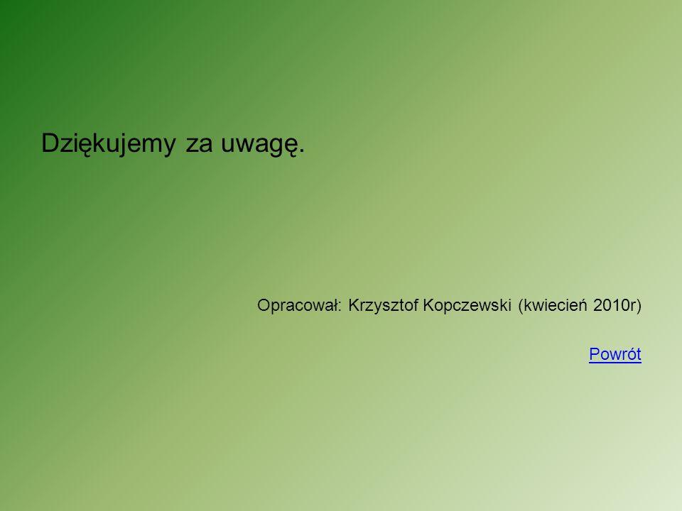 Dziękujemy za uwagę. Opracował: Krzysztof Kopczewski (kwiecień 2010r) Powrót