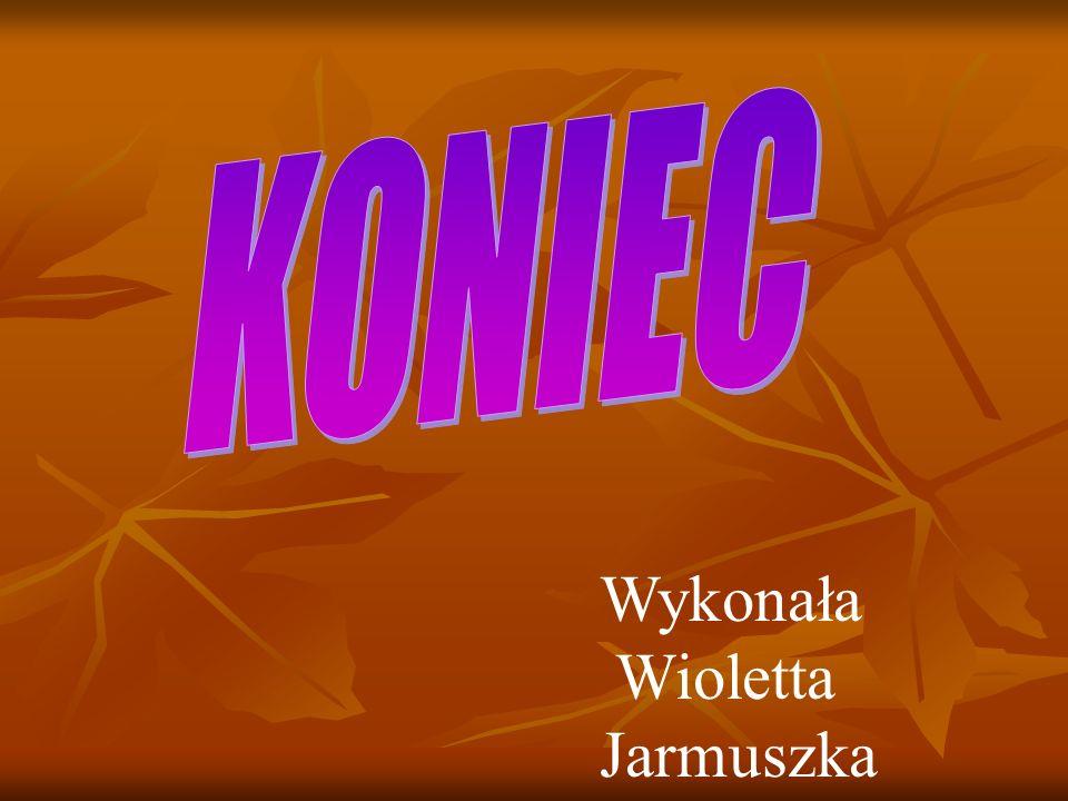 Wykonała Wioletta Jarmuszka