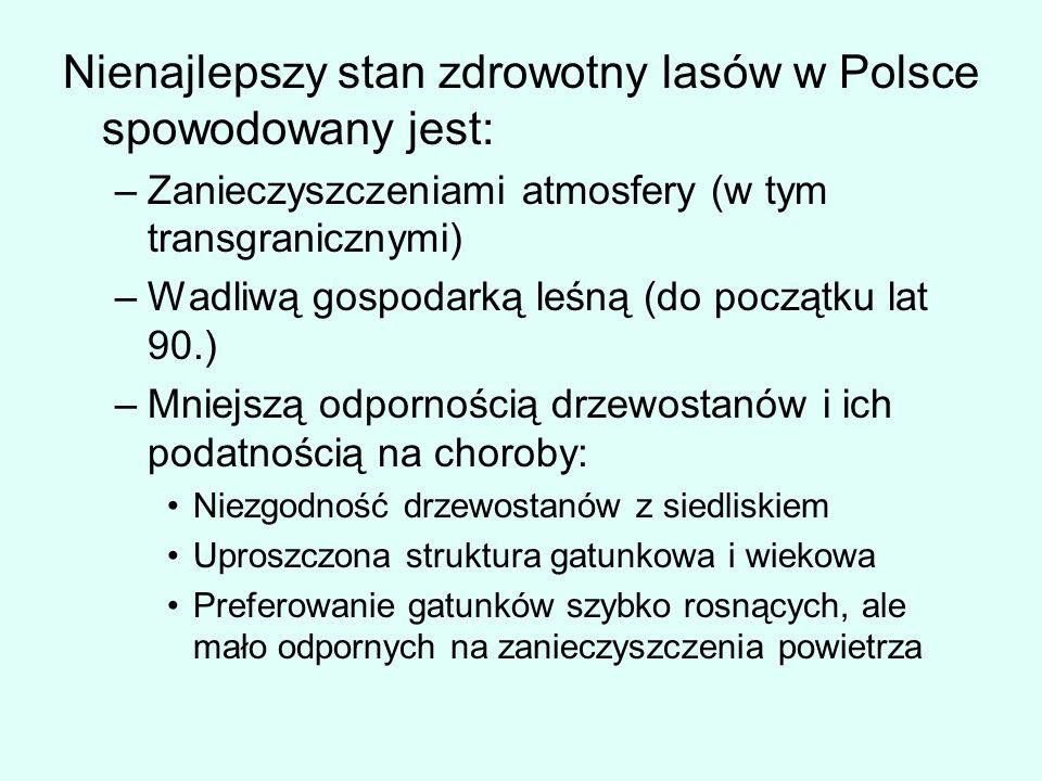 Nienajlepszy stan zdrowotny lasów w Polsce spowodowany jest: –Zanieczyszczeniami atmosfery (w tym transgranicznymi) –Wadliwą gospodarką leśną (do pocz