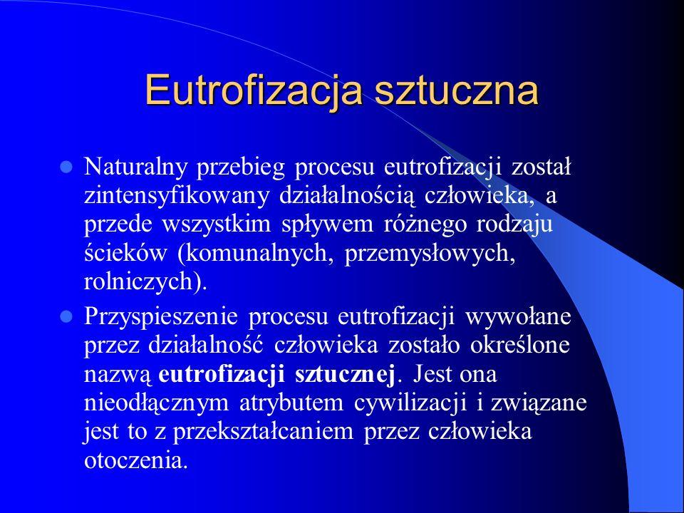 Eutrofizacja sztuczna Naturalny przebieg procesu eutrofizacji został zintensyfikowany działalnością człowieka, a przede wszystkim spływem różnego rodzaju ścieków (komunalnych, przemysłowych, rolniczych).