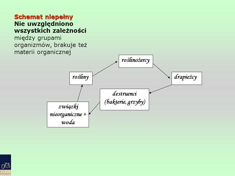 rośliny roślinożercy drapieżcy destruenci (bakterie, grzyby) związki nieorganiczne + woda Schemat niepełny Nie uwzględniono wszystkich zależności międ
