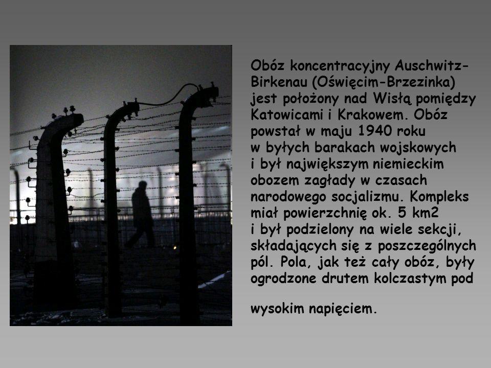 Obóz koncentracyjny Auschwitz- Birkenau (Oświęcim-Brzezinka) jest położony nad Wisłą pomiędzy Katowicami i Krakowem. Obóz powstał w maju 1940 roku w b