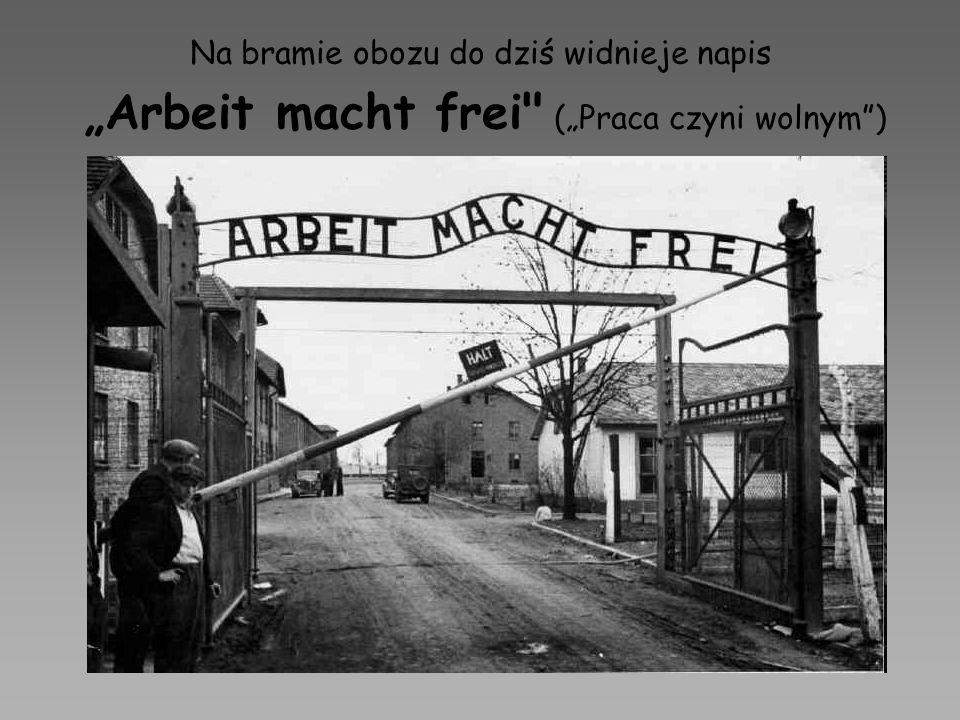 Na bramie obozu do dziś widnieje napis Arbeit macht frei