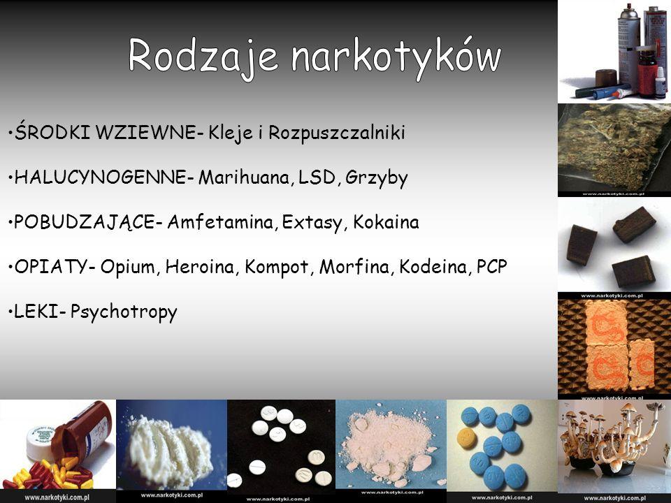ŚRODKI WZIEWNE- Kleje i Rozpuszczalniki HALUCYNOGENNE- Marihuana, LSD, Grzyby POBUDZAJĄCE- Amfetamina, Extasy, Kokaina OPIATY- Opium, Heroina, Kompot, Morfina, Kodeina, PCP LEKI- Psychotropy