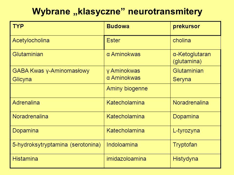 Wybrane klasyczne neurotransmitery TYPBudowaprekursor AcetylocholinaEstercholina Glutaminianα Aminokwasα-Ketoglutaran (glutamina) GABA Kwas γ-Aminomasłowy Glicyna γ Aminokwas α Aminokwas Glutaminian Seryna Aminy biogenne AdrenalinaKatecholaminaNoradrenalina KatecholaminaDopamina KatecholaminaL-tyrozyna 5-hydroksytryptamina (serotonina)IndoloaminaTryptofan HistaminaimidazoloaminaHistydyna