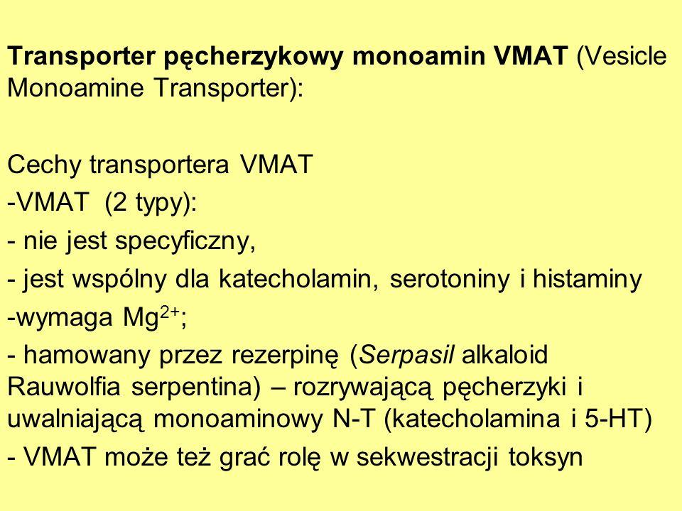 Transporter pęcherzykowy monoamin VMAT (Vesicle Monoamine Transporter): Cechy transportera VMAT -VMAT (2 typy): - nie jest specyficzny, - jest wspólny
