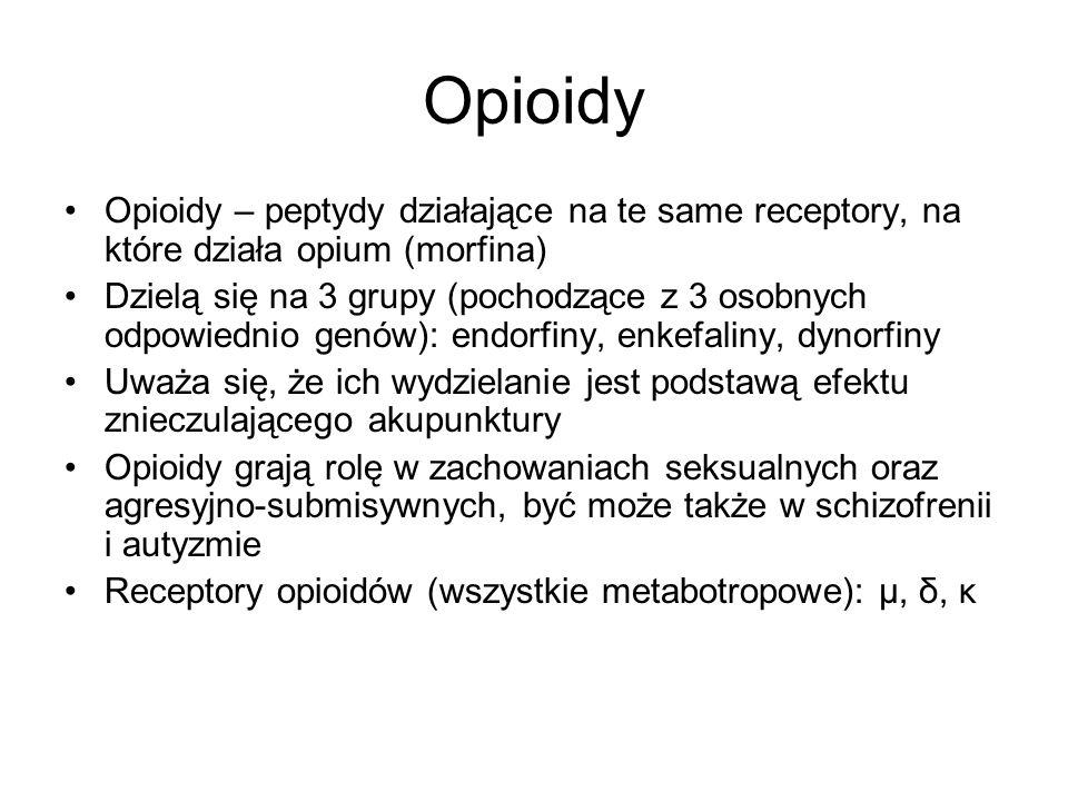 Opioidy Opioidy – peptydy działające na te same receptory, na które działa opium (morfina) Dzielą się na 3 grupy (pochodzące z 3 osobnych odpowiednio genów): endorfiny, enkefaliny, dynorfiny Uważa się, że ich wydzielanie jest podstawą efektu znieczulającego akupunktury Opioidy grają rolę w zachowaniach seksualnych oraz agresyjno-submisywnych, być może także w schizofrenii i autyzmie Receptory opioidów (wszystkie metabotropowe): µ, δ, κ