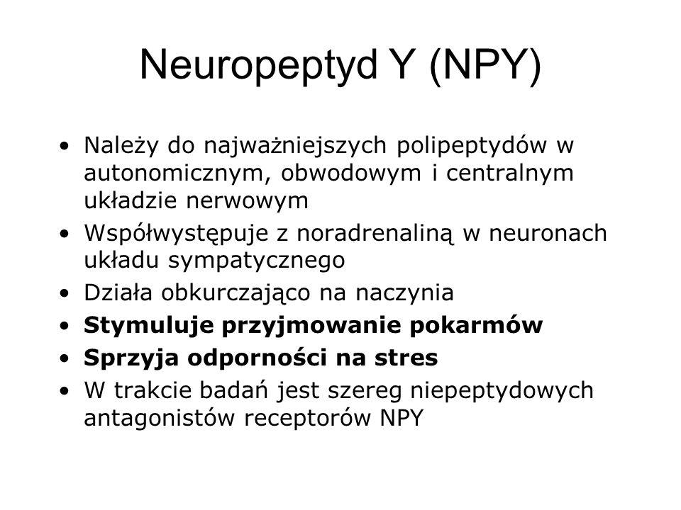 Neuropeptyd Y (NPY) Należy do najwa ż niejszych polipeptydów w autonomicznym, obwodowym i centralnym układzie nerwowym Współwystępuje z noradrenaliną