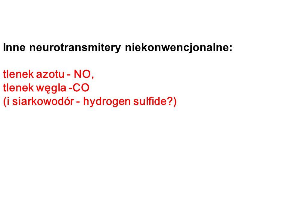 Inne neurotransmitery niekonwencjonalne: tlenek azotu - NO, tlenek węgla -CO (i siarkowodór - hydrogen sulfide?)