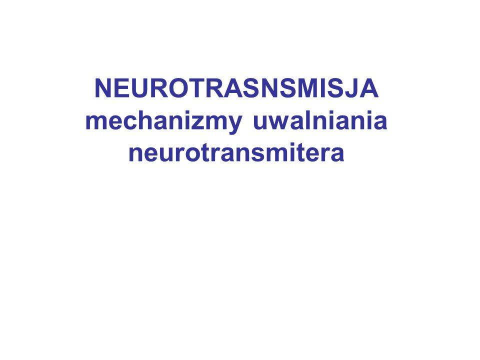NEUROTRASNSMISJA mechanizmy uwalniania neurotransmitera