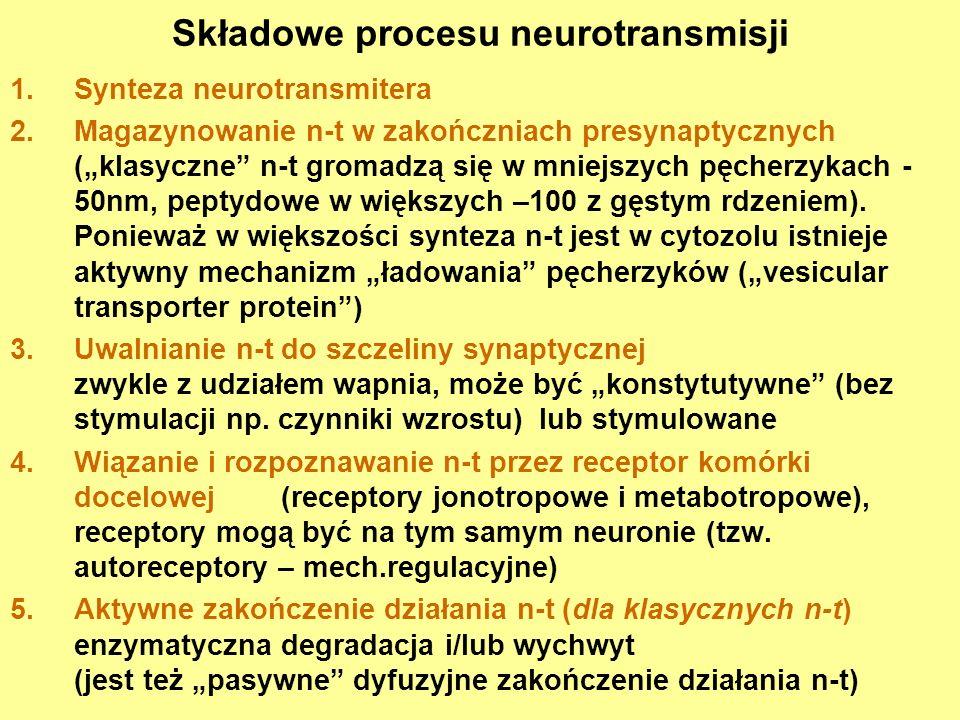 Składowe procesu neurotransmisji 1.Synteza neurotransmitera 2.Magazynowanie n-t w zakończniach presynaptycznych (klasyczne n-t gromadzą się w mniejszy