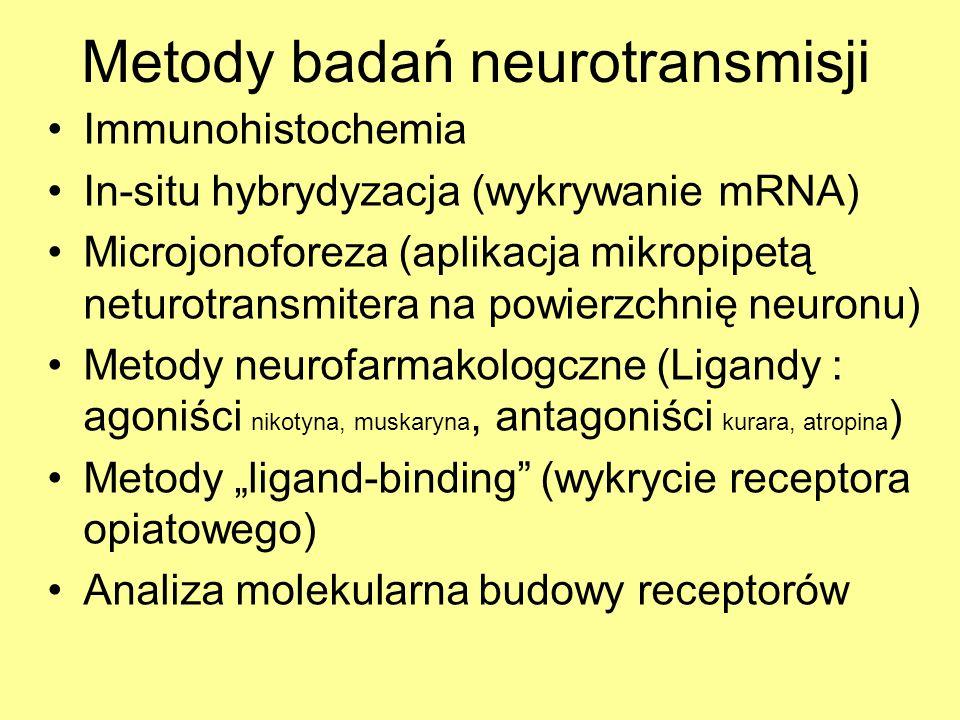 Metody badań neurotransmisji Immunohistochemia In-situ hybrydyzacja (wykrywanie mRNA) Microjonoforeza (aplikacja mikropipetą neturotransmitera na powierzchnię neuronu) Metody neurofarmakologczne (Ligandy : agoniści nikotyna, muskaryna, antagoniści kurara, atropina ) Metody ligand-binding (wykrycie receptora opiatowego) Analiza molekularna budowy receptorów