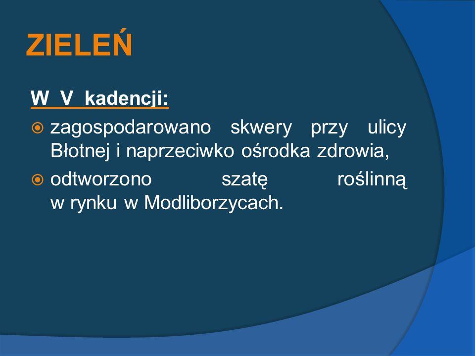 ZIELEŃ W V kadencji: zagospodarowano skwery przy ulicy Błotnej i naprzeciwko ośrodka zdrowia, odtworzono szatę roślinną w rynku w Modliborzycach.
