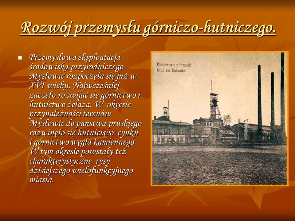 Rozwój przemysłu górniczo-hutniczego.