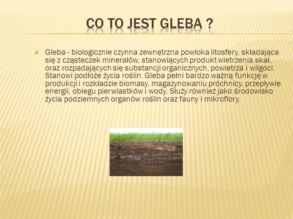 Gleba - biologicznie czynna zewnętrzna powłoka litosfery, składająca się z cząsteczek minerałów, stanowiących produkt wietrzenia skał, oraz rozpadających się substancji organicznych, powietrza i wilgoci.