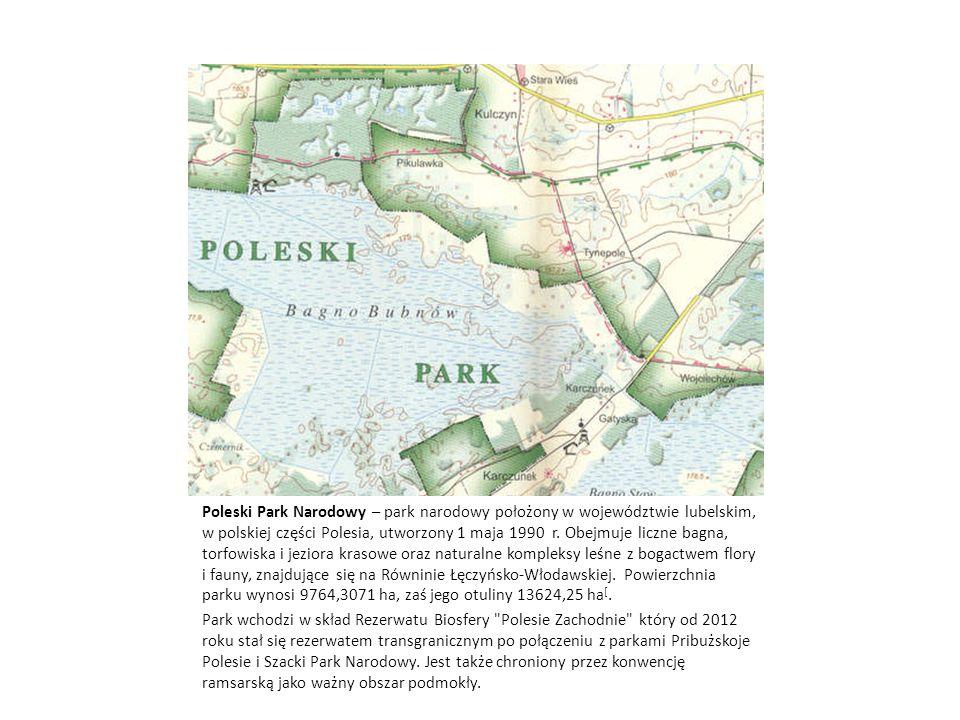 Poleski Park Narodowy – park narodowy położony w województwie lubelskim, w polskiej części Polesia, utworzony 1 maja 1990 r. Obejmuje liczne bagna, to