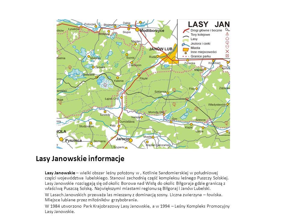 Lasy Janowskie informacje Lasy Janowskie – wielki obszar leśny położony w, Kotlinie Sandomierskiej w południowej części województwa lubelskiego. Stano