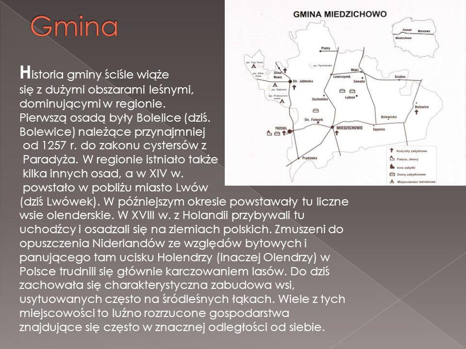 H istoria gminy ściśle wiąże się z dużymi obszarami leśnymi, dominującymi w regionie. Pierwszą osadą były Bolelice (dziś. Bolewice) należące przynajmn
