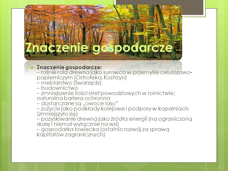 Rodzaje drzew w Polsce: 64, 3 % sosna 12, 7 % świerk 4, 5 % jodła 6, 0 % buk 5, 6 % dąb, klon, wiąz 3, 1 % brzoza 3, 0 % olcha 0, 4 % grab 0,4 % osika, topola, wierzba