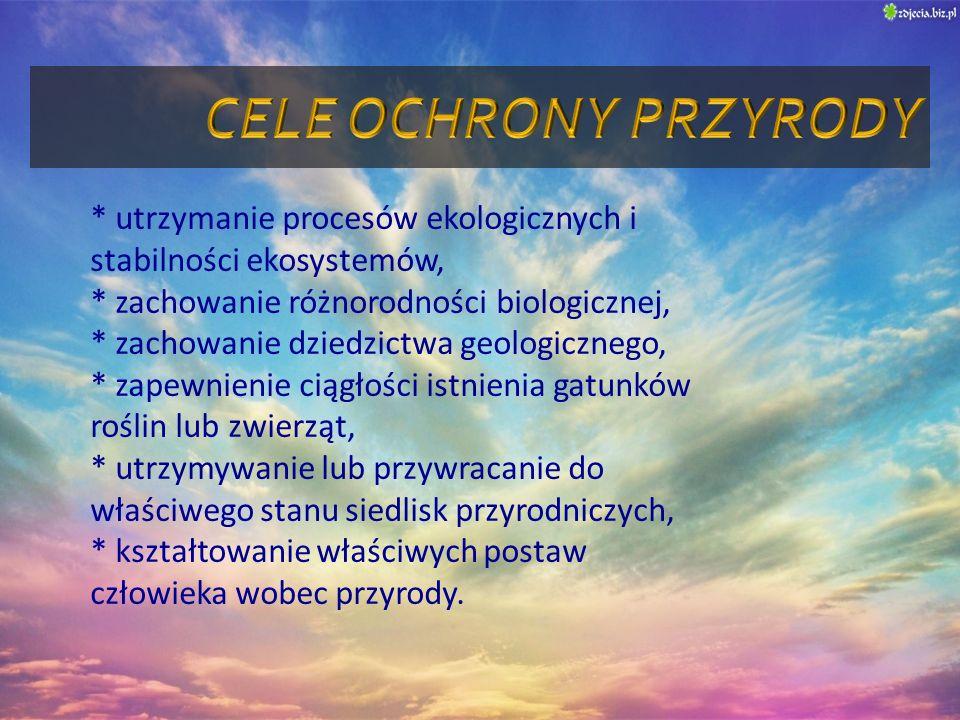 * utrzymanie procesów ekologicznych i stabilności ekosystemów, * zachowanie różnorodności biologicznej, * zachowanie dziedzictwa geologicznego, * zape