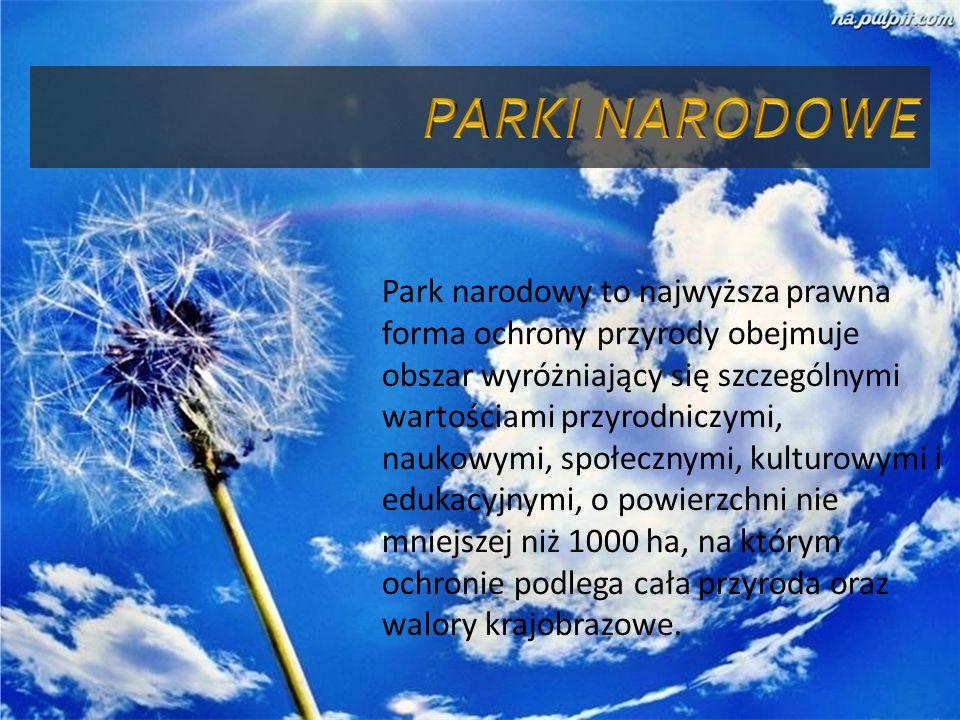 Park narodowy to najwyższa prawna forma ochrony przyrody obejmuje obszar wyróżniający się szczególnymi wartościami przyrodniczymi, naukowymi, społeczn