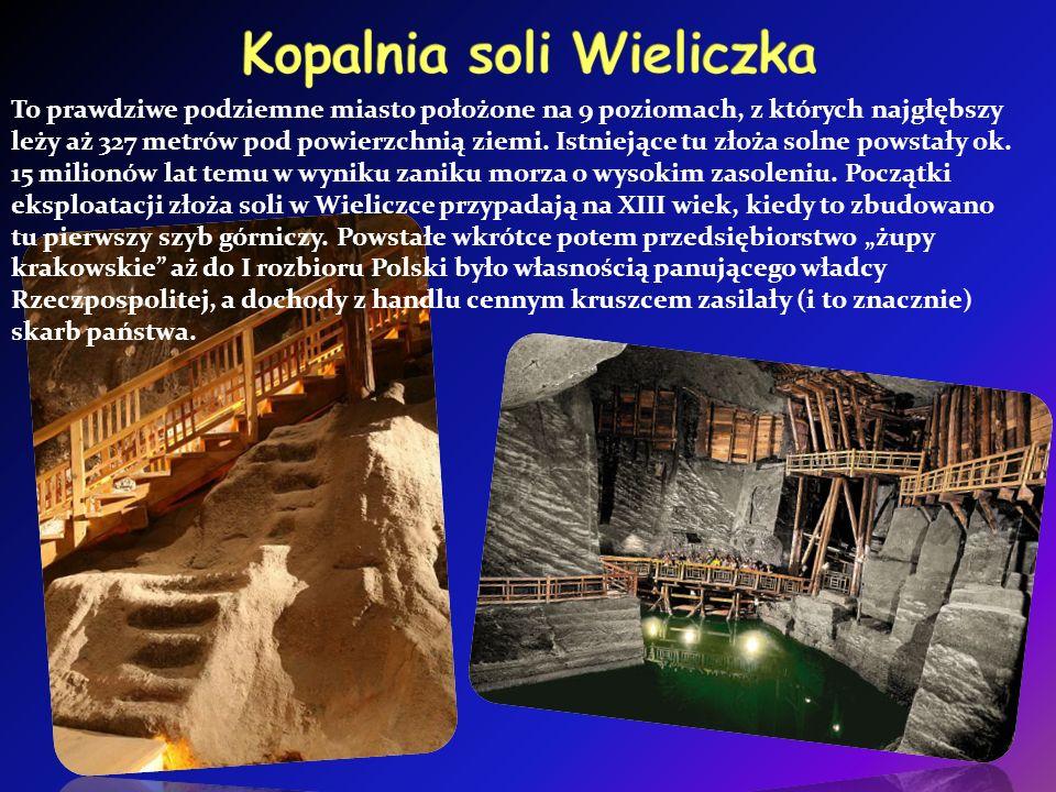 To prawdziwe podziemne miasto położone na 9 poziomach, z których najgłębszy leży aż 327 metrów pod powierzchnią ziemi.