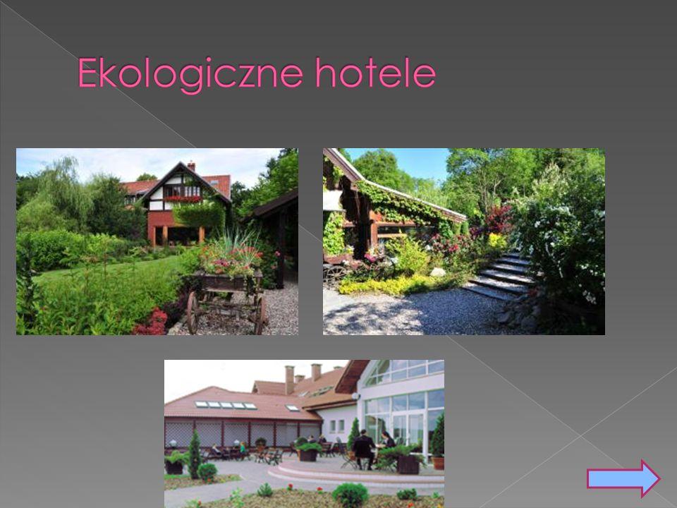 Co trzeci (29%) z pięciu tysięcy ankietowanych w całej Europie rezerwując miejsca w popularnych serwisach internetowych wybrałaby hotel znany z nastawienia eco-friendly.